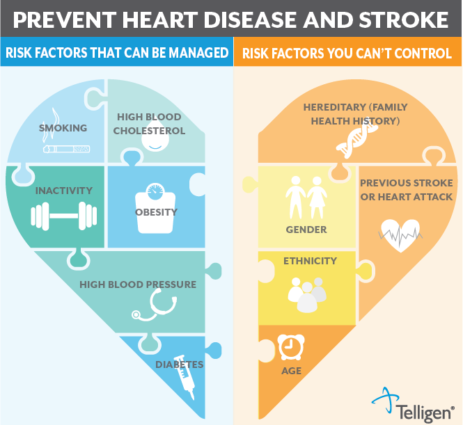 Infographic in the shape of a heart outlining different risk factors for heart disease and stroke